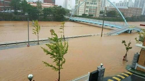 キョンサン南道の巨済市_洪水2.jpg
