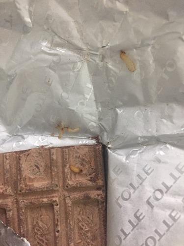 ロッテガーナチョコレート1.jpg