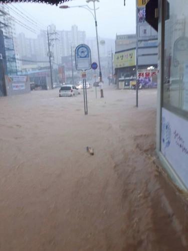 巨済島_洪水4.JPG