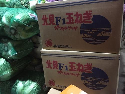 日本の玉ねぎ1.jpg