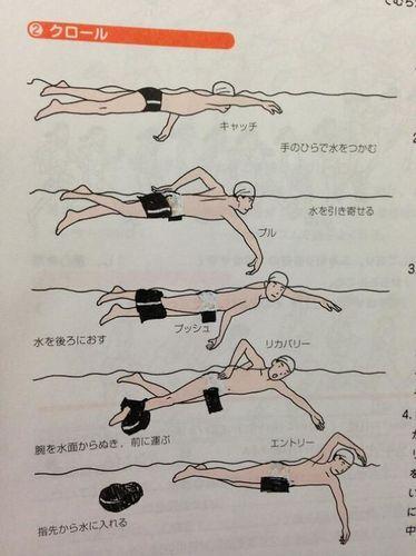 教科書らくがき水泳.jpg