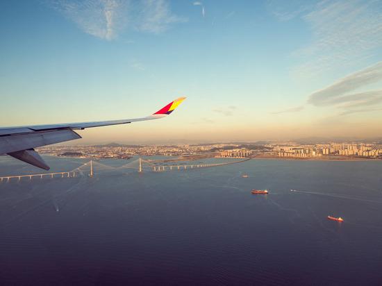 Lovepik_com-501160572-the-plane-landed-over-seoul-south-korea_.jpg
