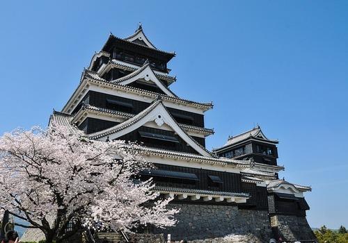 cherry-blossoms-301251_640.jpg